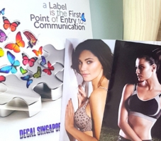 Brochure & Leaflet